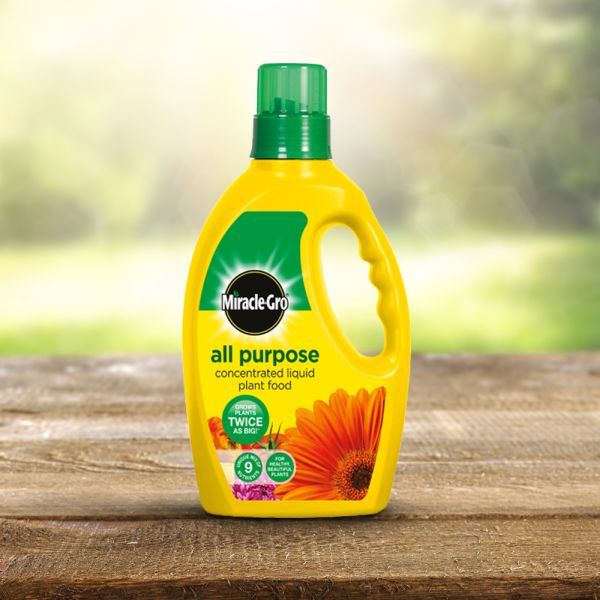 Miracle-gro All Purpose Liquid Plant Food 1 Litre