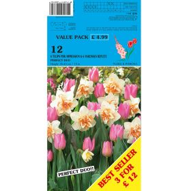 Duo Narcis Replete & Tulips Pink Impress