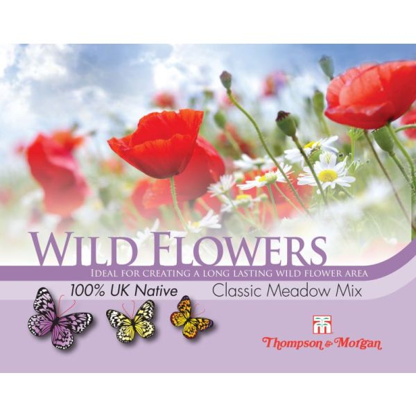 Wild Flower Classic Meadow Seeds