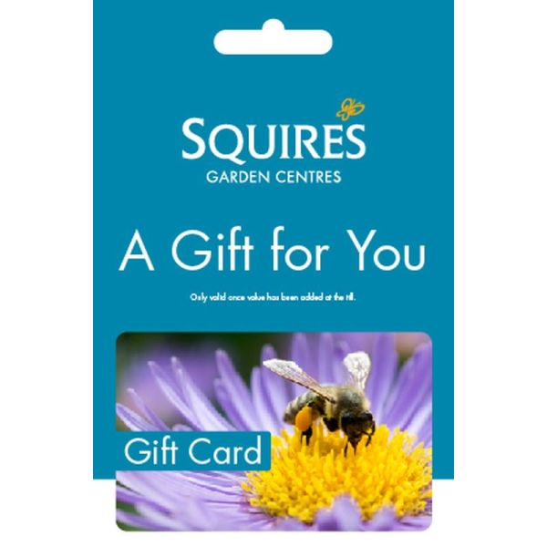 Squire's Gift Card - Bumble Bee