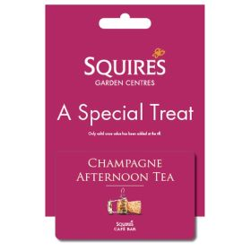 Squire's Champagne Afternoon Tea Gift Card