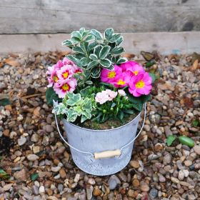 Spring Harmony Butterfly Bucket 23cm