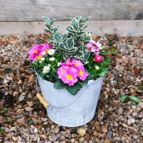 Spring Harmony Butterfly Bucket  28cm