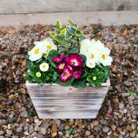 Spring Rustic Wooden Planter 27cm