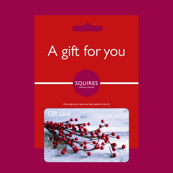 Squire's Gift Card - Winter