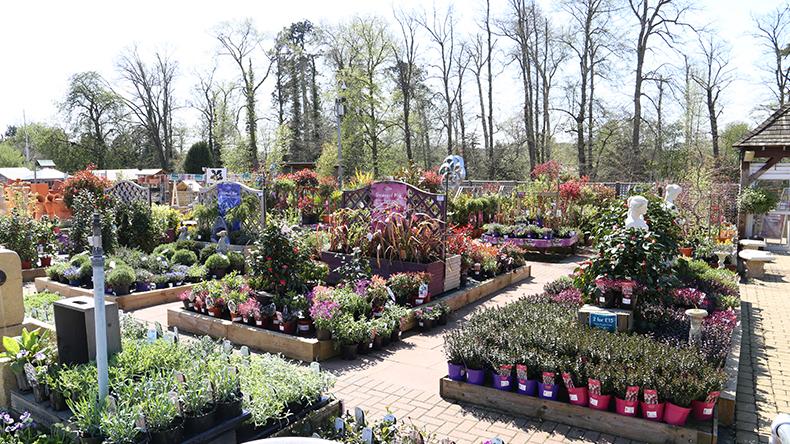 Garden Centre: Squire's Garden Centres
