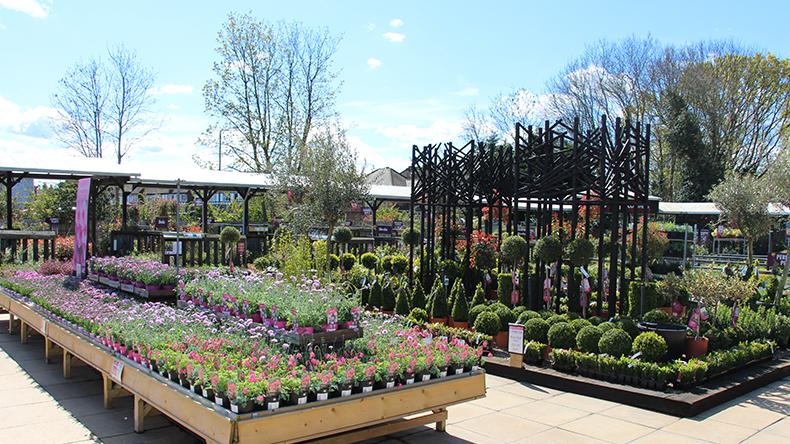 Squire S Twickenham Free Parking Squire S Garden Centres