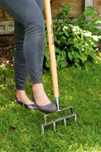 Love Your Lawn - Squires Garden Centres