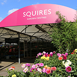 https://www.squiresgardencentres.co.uk/wp-content/uploads/2019/08/History-Homepage.jpg