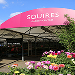 New Squire's Garden Centre opens in Wokingham