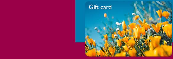 Squire's Gift Cards